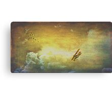 Inside my dreams I can fly Canvas Print