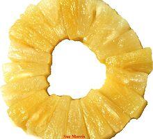 Pineapple by Havocgirl