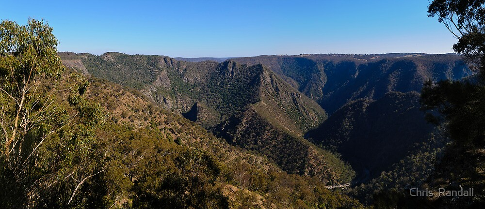 Edcars Lookout - Wollomombi Gorge  by Chris  Randall