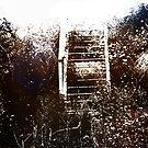 derelict by Nikolay Semyonov