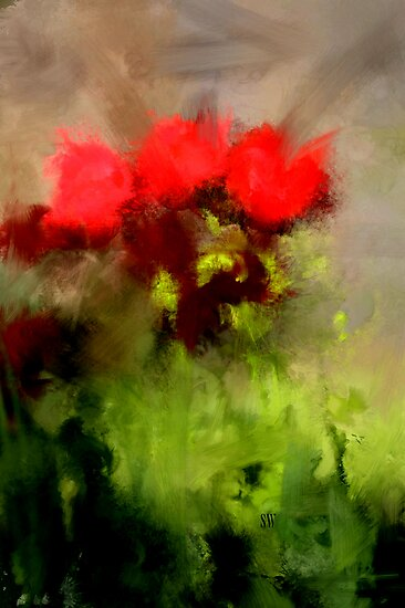 A handful of roses by Scott Wilson