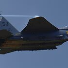 F-15 Eagle by Ted Schlosser