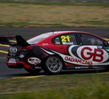 V8 Supercars - Sydney 400 2015 -Dale Wood - Holden Sticker