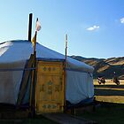 A Round House in Mongolia by Citisurfer