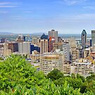 Panorama Montreal in Canada by Zoltán Duray
