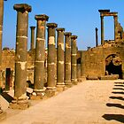 Bosra - City of Bassalt by Citisurfer