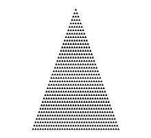 666 triangles Photographic Print