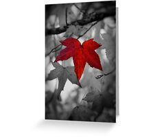 Stand Out Above The Rest Greeting Card