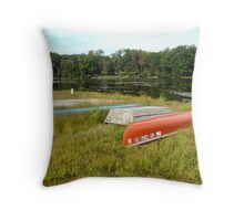 Waiting For One Last Summer Voyage Throw Pillow