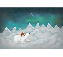 Polar Photographic Print