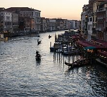 Venice, Italy - a Classic View of the Grand Canal by Georgia Mizuleva