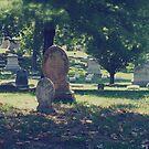 cemetery drive by hispurplegloves