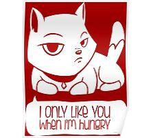 A Cat's confession - Funny Cartoon Cat design Poster