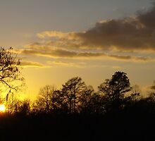 December Sunset by Dawne Dunton