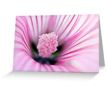 Candy-Striped Greeting Card