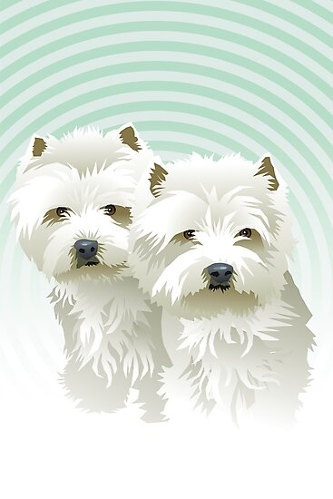 westies (mother and daughter) by Matt Mawson