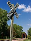 Summer Crossing by Greg Belfrage