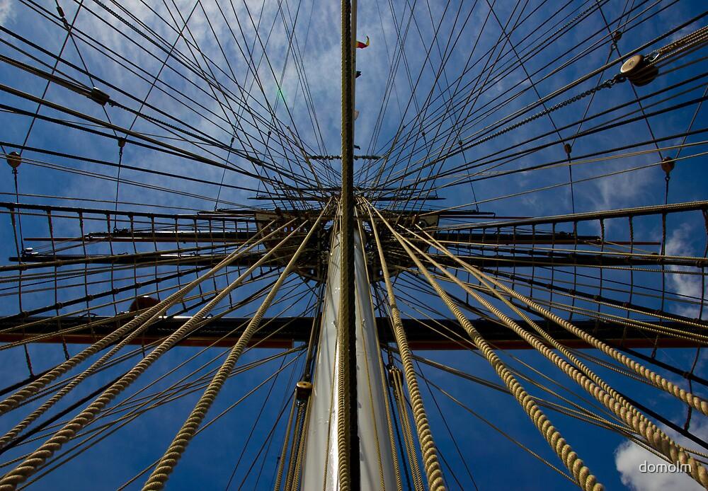 Ahoy Matey! by domolm