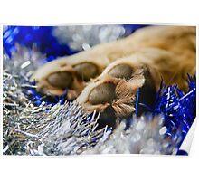 Wishing you a Pawsome Christmas Poster
