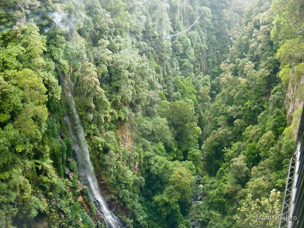 Gold Coast ,Hinterland Wilderness by MardiGCalero