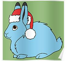 Light Blue Arctic Hare with Christmas Red Santa Hat Poster