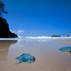 Jellyfish Gorge - North Stradbroke Island Qld Australia by Beth  Wode