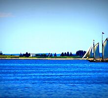sailing takes me away by Lynne Prestebak