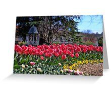 Corbett Gardens, Bowral Greeting Card