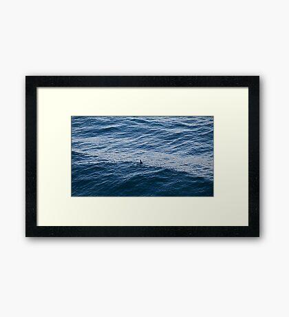 15th September 2012 Framed Print