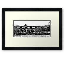The Old Rail Bridge Framed Print