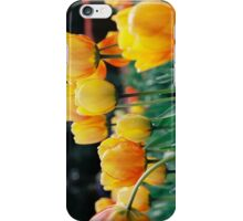 Yellow Tulips - Landscape iPhone Case/Skin