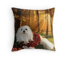 When Autumn Leaves Start to Fall ! Throw Pillow