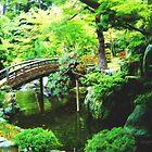 Tranquil Japanese Garden  by Jo-Anne Gazo-McKim
