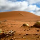 Melons in the Sand by Citisurfer