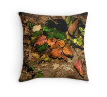Kodachrome Fall Throw Pillow