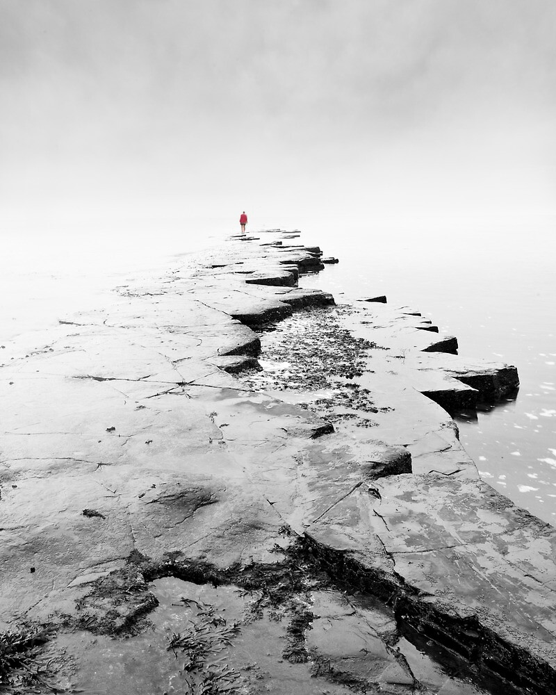 Into the mist by Rachael Talibart