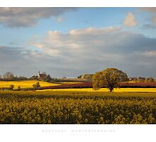 Weethley, Worcestershire by Andrew Roland
