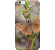 Butterfly or Moth That is the Question case iPhone Case/Skin