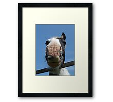 My Favourite Horse Framed Print