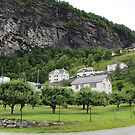 Houses on the cliff in Geiranger by Sweetpea06