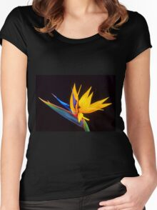 Strelitzia Isolated On Black Background Women's Fitted Scoop T-Shirt