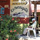 Siesta...Town of Sayulita, Mexico by Marilyn Bell