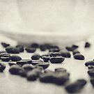 Spilt Beans by Melissa Dickson