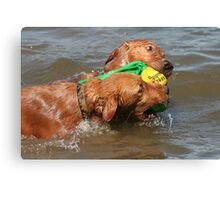 Water Toy Wrestling  Canvas Print