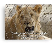 """The Lion Sleeps Tonight""  by Carter L. Shepard Canvas Print"