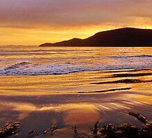 Glistening sand - Adventure Bay, Bruny Island, Tasmania by PC1134