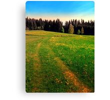 Outdoors in sunny spring Canvas Print