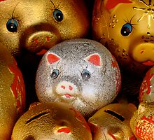 Lucky Piggy  by AHigginsPhoto