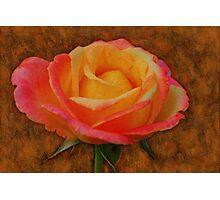 Antiqued Rose Photographic Print