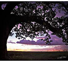 Wet Season Sunset, Derby Marsh. Photographic Print